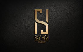 Logo firmy - SKY HIGH Management