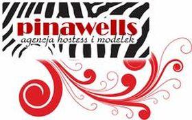 Logo firmy - Pinawells