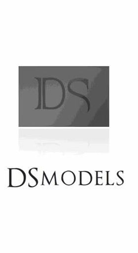 Logo firmy - DSmodels