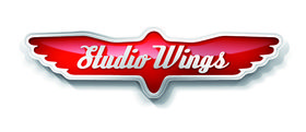 Logo firmy - Studio Wings
